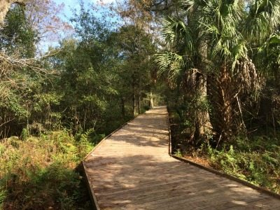 The boardwalk trail at Lake Lotus Park
