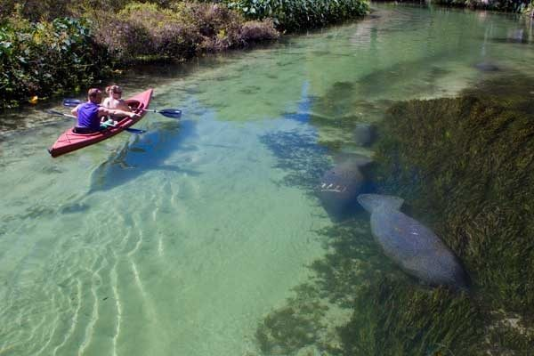 Weeki Wachee kayak by Weeki Wachee kayak rental Kayaking Central Florida