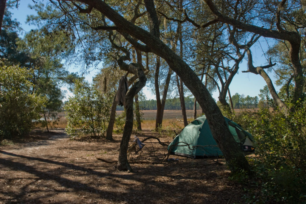 Dispersed camping at Ocala National Forest
